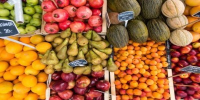 Tips for Packing Food for an RV Trip